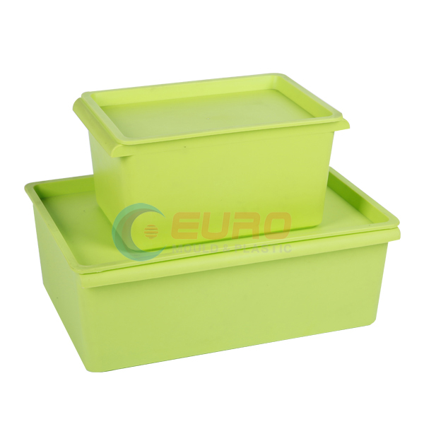 storage box mold Featured Image